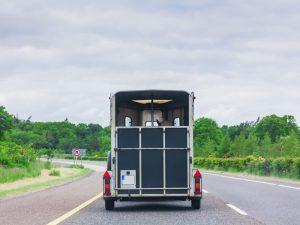 Horsebox in transport on motorway